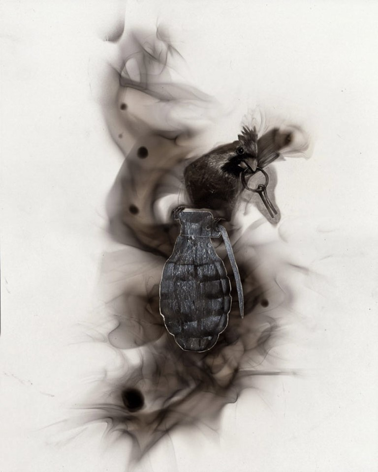 Steve-Spazuk-pinturas-com-fogo (7)