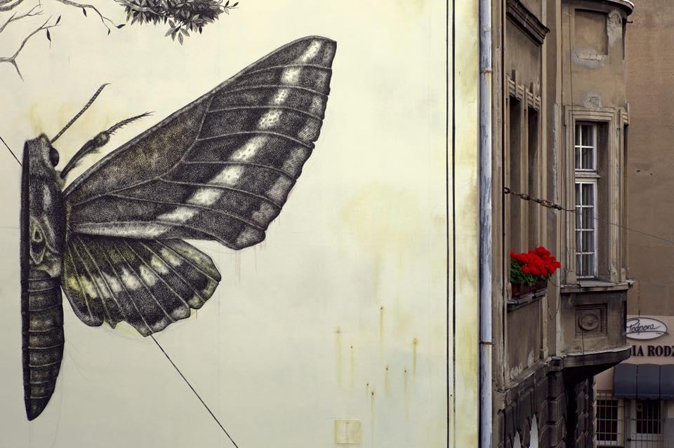 alexis-diaz-grafite-mural-sentir-polonia-dionisio-arte (6)