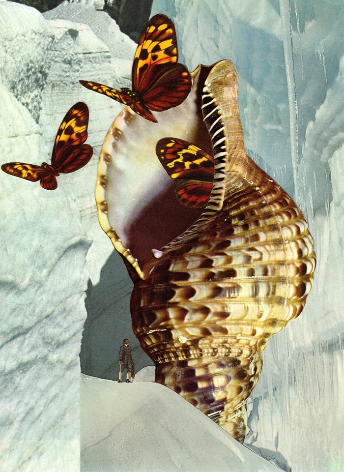 david-daruelle-colagens-surrealismo-dionisio-arte (14)