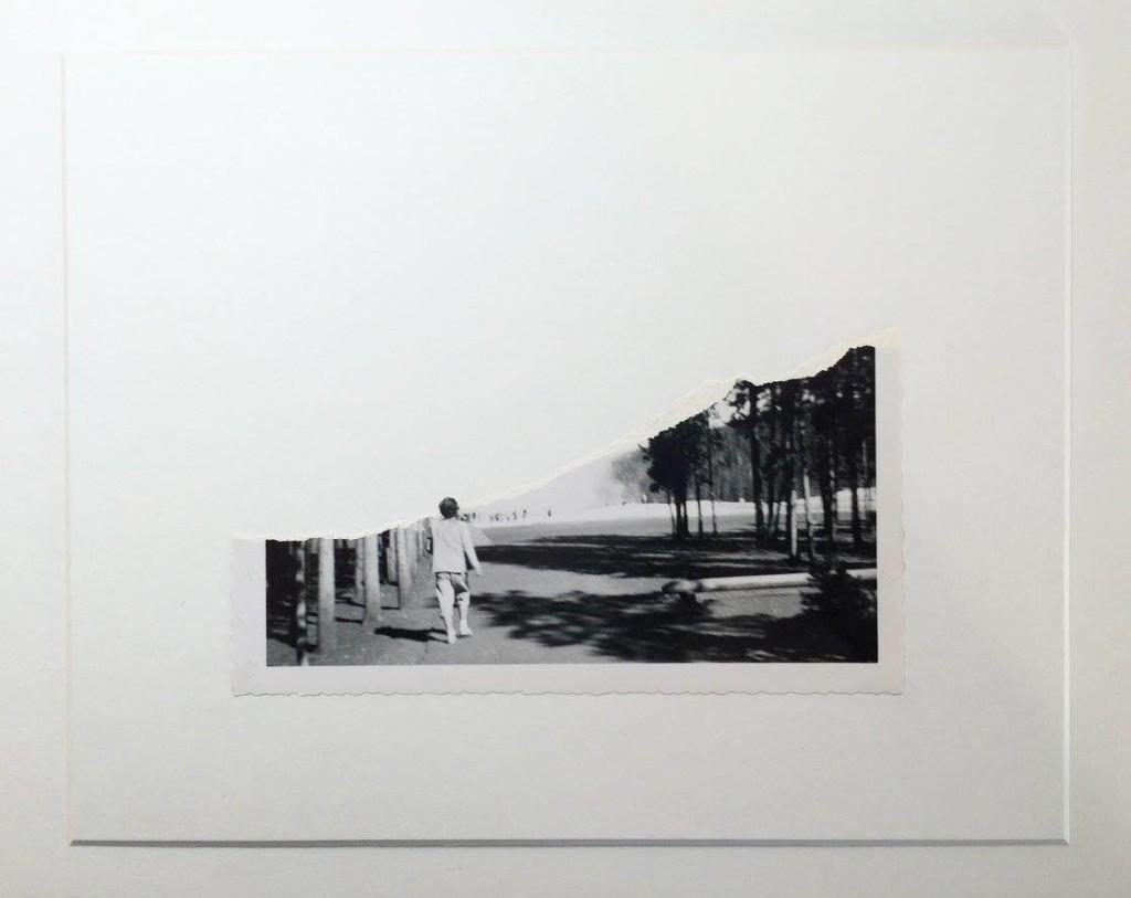 david-daruelle-colagens-surrealismo-dionisio-arte (23)
