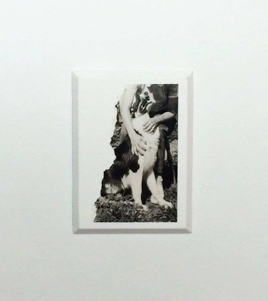 david-daruelle-colagens-surrealismo-dionisio-arte (38)