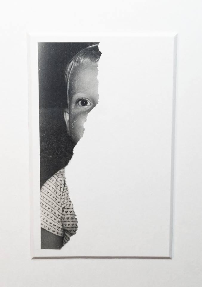 david-daruelle-colagens-surrealismo-dionisio-arte (39)