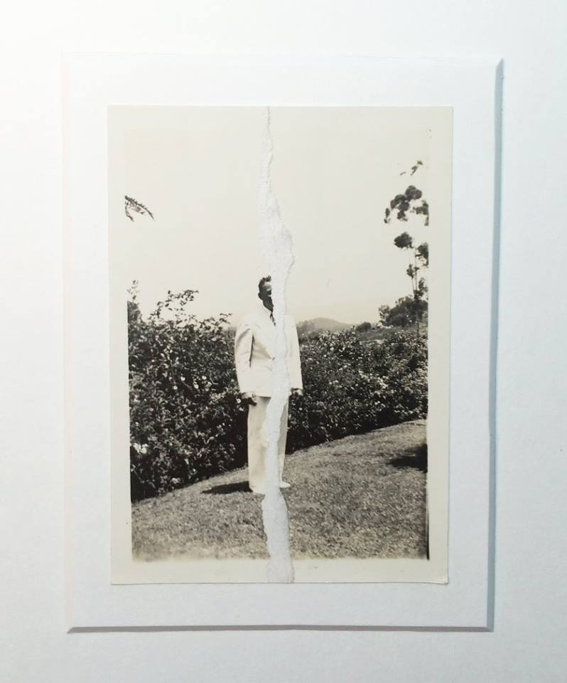 david-daruelle-colagens-surrealismo-dionisio-arte (41)