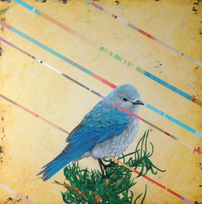 David-Rice-dionisio-arte (2)