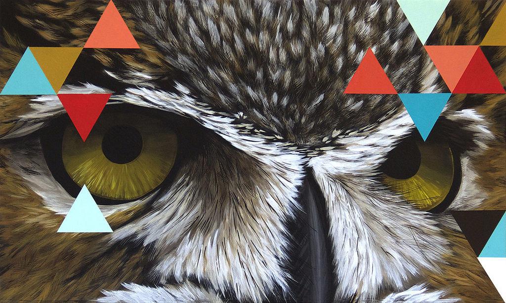 """David Rice - """"Owl"""""""