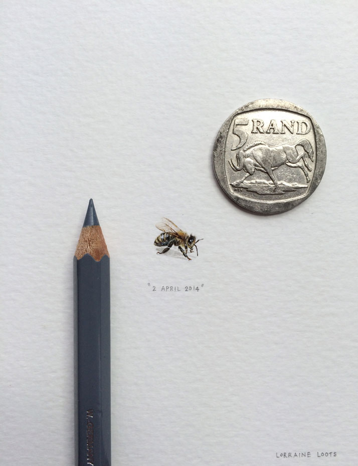 lorraine-loots-arte-miniaturas (1)