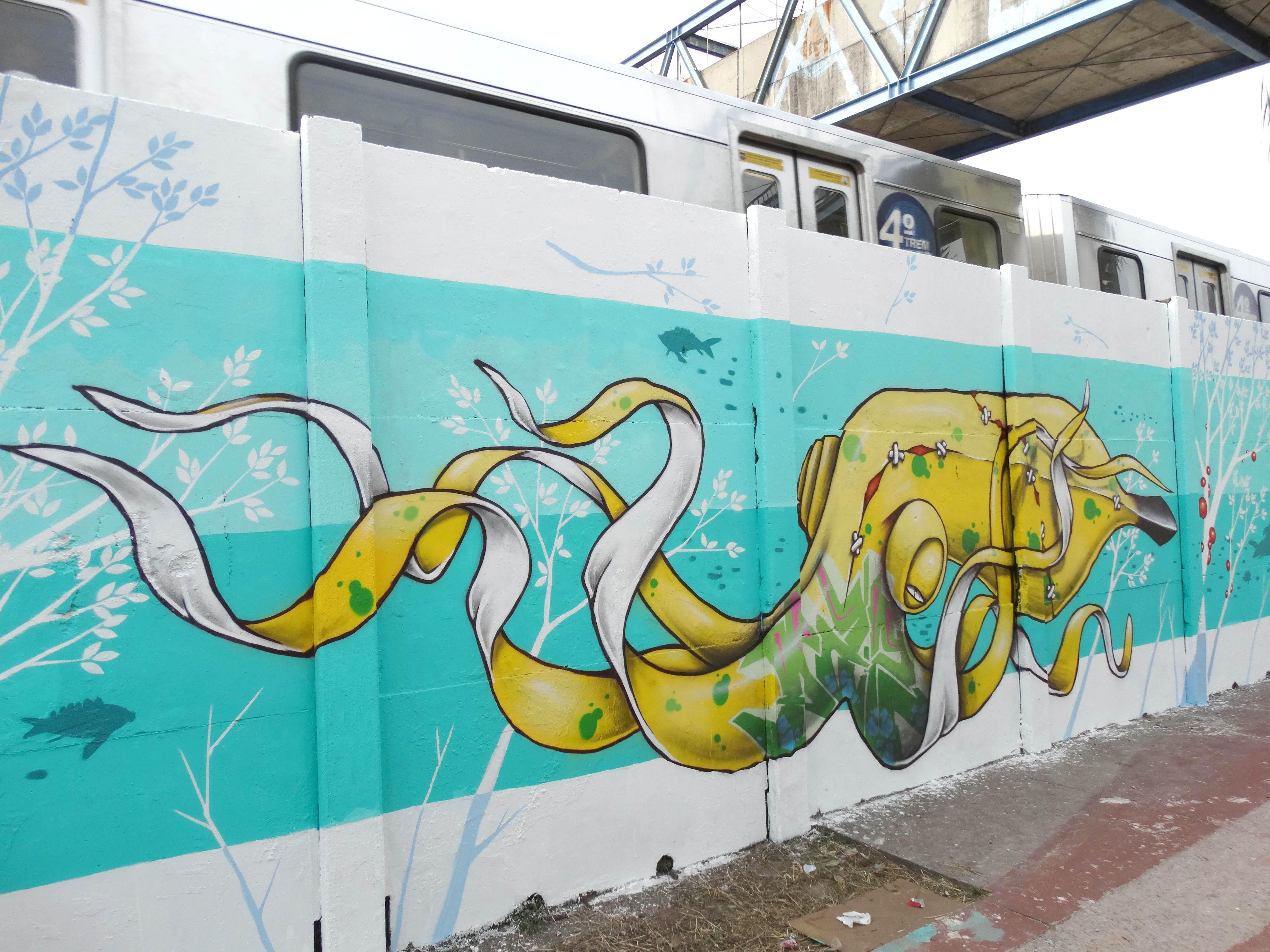 binho-ribeiro-grafite-sp-brasil-dionisio-arte (10)