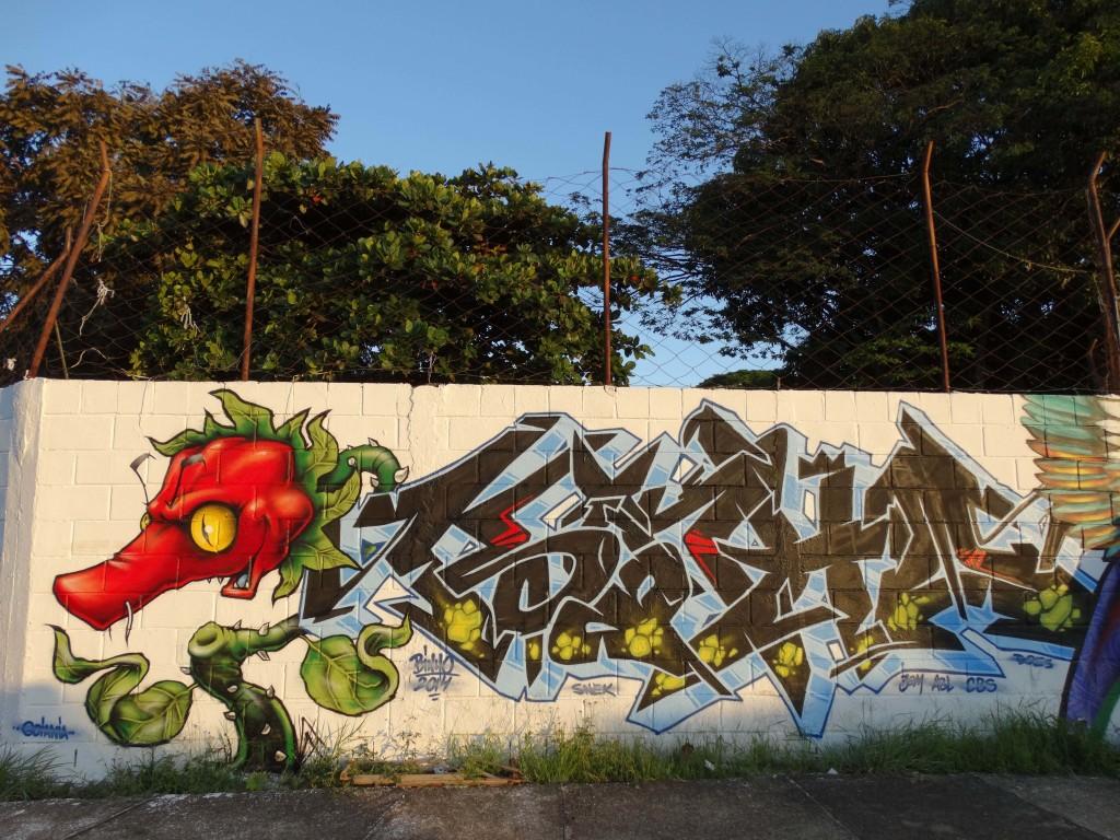 binho-ribeiro-grafite-sp-brasil-dionisio-arte (24)