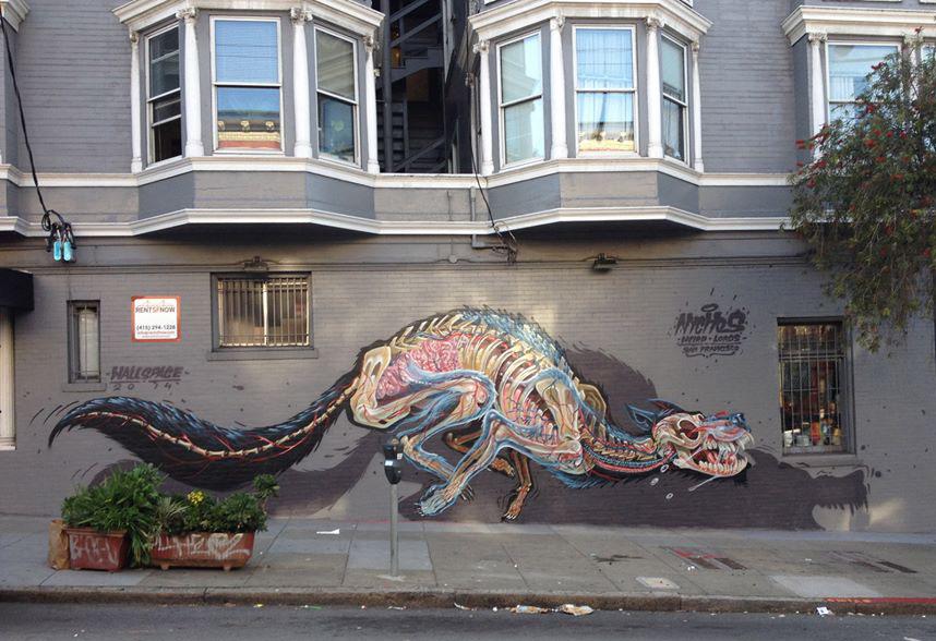 nychos-grafite-anatomia-animais-dionisio-arte (11)