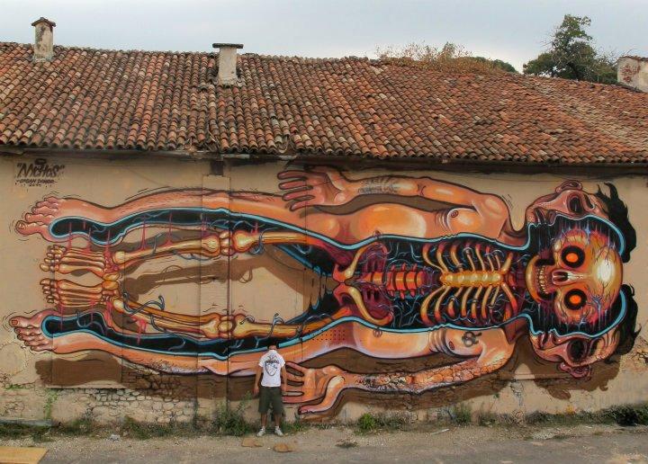 nychos-grafite-anatomia-animais-dionisio-arte (15)