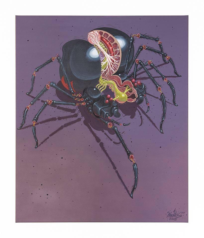 nychos-grafite-anatomia-animais-dionisio-arte (23)