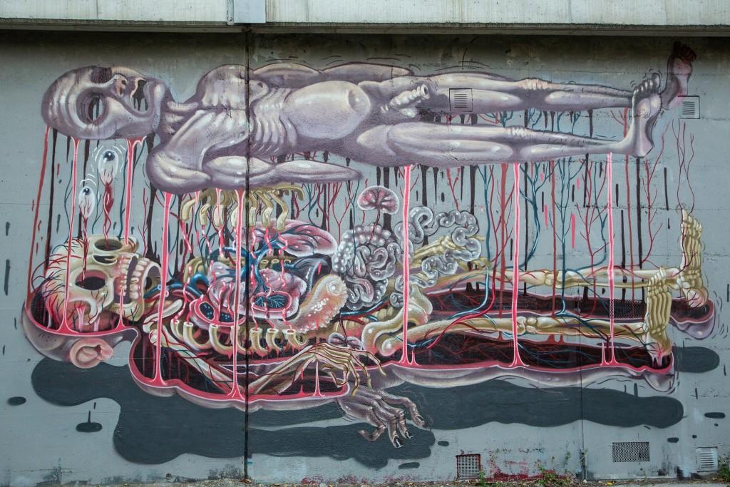 nychos-grafite-anatomia-animais-dionisio-arte (3)