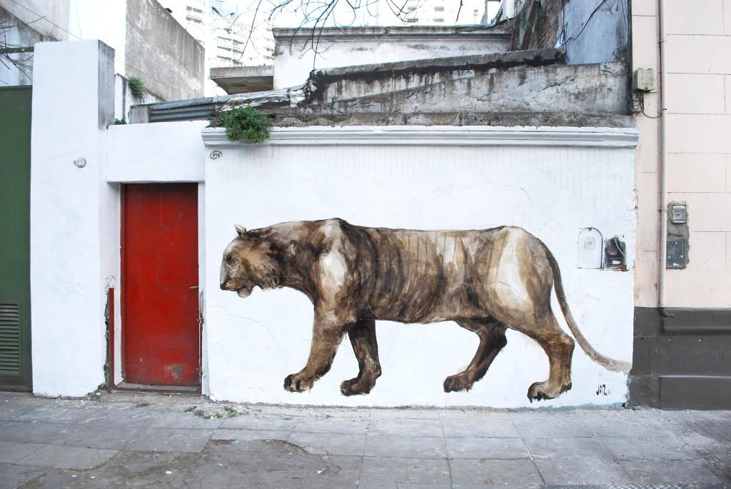 franco-fasoli-jaz-grafite-argentina-america-latina-dionisio-arte (4)